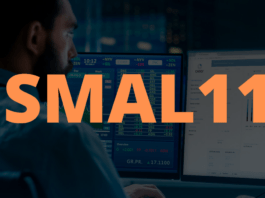 SMAL11 - o melhor etf da bolsa